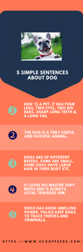 Essay on Dog for Class 1, 2, 3, 4, 5, 6 & 10 (My Pet Dog 10